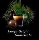 lungo_origin_guatemala_visual1